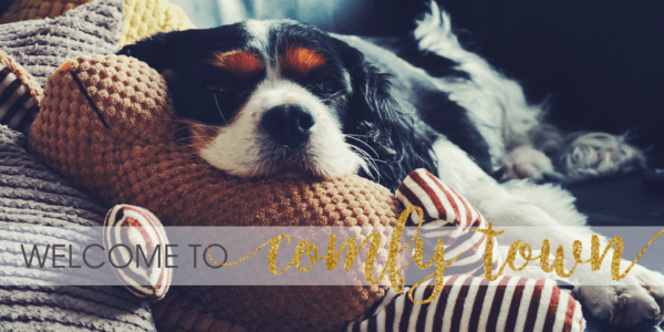 Rebecca Page November 2018 Blog Tour: Comfy Town